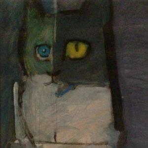 gatto_notturno